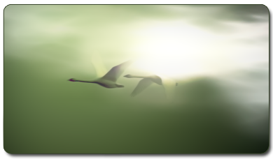 http://aliselvi.com/wp-content/uploads/2016/05/flying-geese-01.png